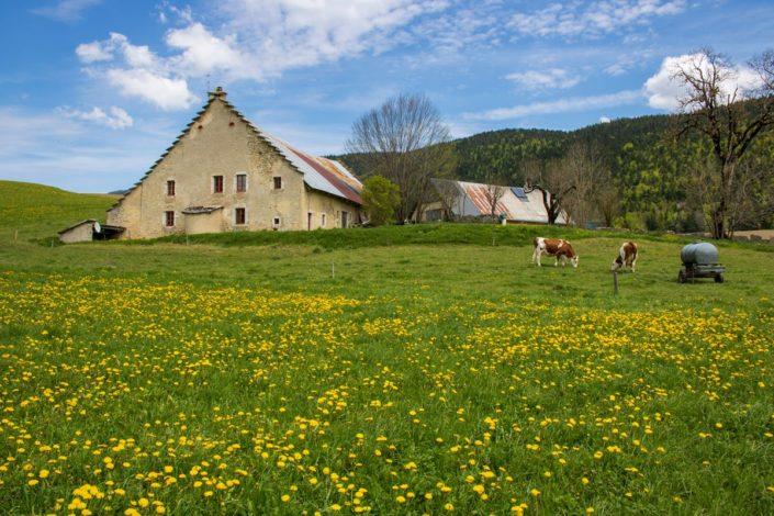 Ferme de la Balme au printemps, Méaudre