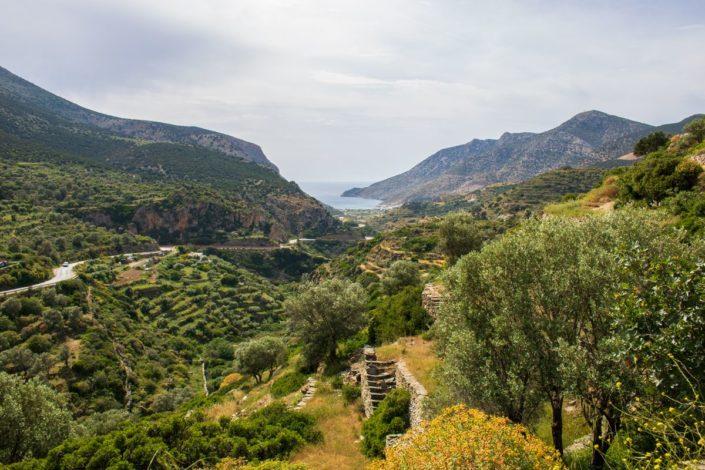 Paysage verdoyant vu depuis le Sifnos Trail n°10