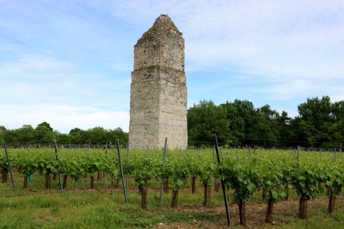 La tour de Pirelongue à Saint-Romain-de-Benet